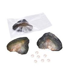 1pcs Love Wish Pearl Mussel Pearl Oyster Drop Pearl Pendant Gift DIY Pearl Best