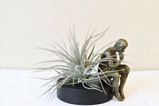 Thinker man,special plant gift,home decor,promotion,only 5 left,USA free shiping