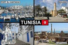 SOUVENIR FRIDGE MAGNET of TUNISIA