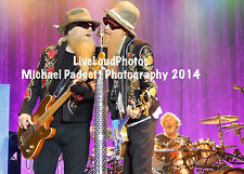 Zz Top - Live Concert Photo - Scottsdale, Az 4-5-14