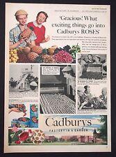 CADBURY'S ROSES - Vintage Magazine Advert (1954) Chocolate, Confectionery *