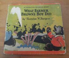 What Farmer Brown's Boy Did by Thornton W. Burgess 1929