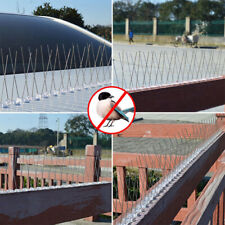 Stainless Steel Bird Spikes Eco-Friendly Anti Pigeon Nail Bird Deterrent Too si