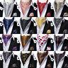 Mens Silk Ascot Cravat Set 55 Colors Paisley Floral Woven Tie Hanky Cufflinks