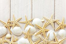 Chopping board cutting board. Tempered glass. White shell starfish beach boards.