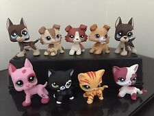 9pcs Littlest Pet Shop LPS 3-Collie Dogs 3-Great Danes 3-Short Hair Cats
