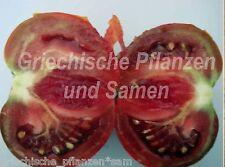 Lila Sari tomate noir 10 graines frais balcon Tomaten Bleu