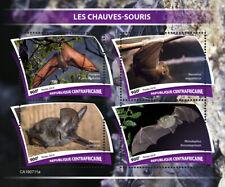 Central Africa  2019 fauna bats  S201910