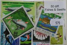 Pesci e animali marini