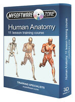 Learn Basic Human Anatomy - Training Course CD - 11 Complete Lessons Full Body