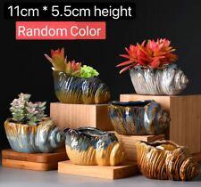 6pcs Conch Cactus Succulent Pots Clay Flower Plant pots Gloss Glaze In/outdoor