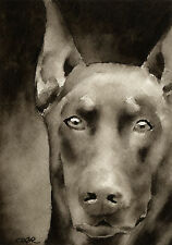 Red Doberman Pinscher Watercolor Art Print Signed by Artist Djr