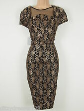 BNWT Little Mistress Gold & Black Lace Wiggle Pencil Dress Size 10 RRP £65