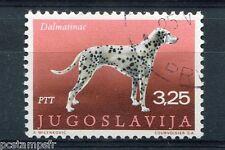YOUGOSLAVIE - 1970, timbre 1278, CHIEN DALMATIEN, oblitéré