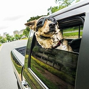 Medium Large Dog Sunglasses Uv Wind Molly Goggles Doggles Black Shatterproof New