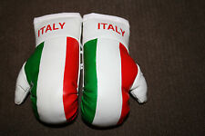 ITALY / ITALIAN FLAG Mini Boxing Gloves *NEW*