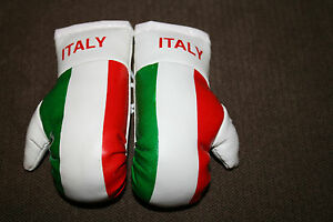 ITALY / ITALIAN FLAG Mini Boxing Gloves Ornament *BRAND NEW*