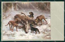 Reichert Hunting Dog Dachsund Deer Cervo Caccia MM 293 postcard cartolina QT7078