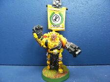 RAR! Imperial Fists GAMESDAY veterano della Space Marine del dipinto disponibilità limitata