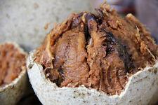 Wood apple 150  SEEDS.100% fresh,germinat,ORGANIC (Limonia acidissima) 150 seeds