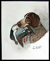 "Jean Herblet, French Art  17""x13""  Original Watercolor - Braque Allemand, Jacket"