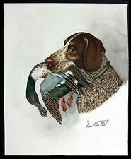 "Jean Herblet, French Art  17""x13""  Original Watercolor - Braque Allemand, Jacket"