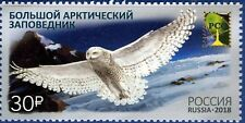 Russia 2018 Birds Arctic Owls,Arctic State Nature Reserve,# 7902,Xf Mnh* (L1)