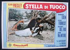 CINEMA-fotobusta  STELLA DI FUOCO elvis presley, eden, forrest, SIEGEL
