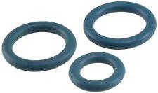 Fuel Injection Fuel Rail O-Ring Kit-VIN: U Airtex 1G1387