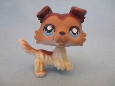 Littlest Pet Shop Dog Collie Sage Paw Up 58 Authentic Has Wear