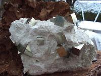 sehr schöne grosse Pyrit Stufe Spanien Navajun1230g