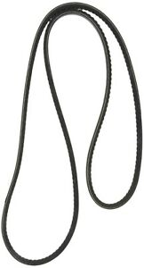Accessory Drive Belt-Power Steering Continental Elite 15406