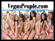 Vegas People.com Dancers Clubs Bachelor Party VIP Limo Night life Domain Pool