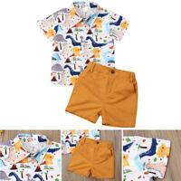 Toddler Baby Boy Summer Tops T-shirt Dinosaur Pants Shorts Holiday Outfit Set