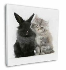 "Cute Kitten with Rabbit 12""x12"" Wall Art Canvas Decor, Picture Print, AC-161-C12"