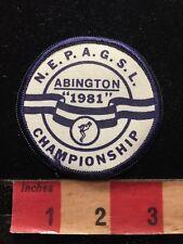 Vtg 1981 NEPAGSL SWIM MEET ABINGTON CHAMPIONSHIP Patch 86N5
