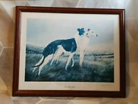 """FRAMED GREYHOUND PRINT SIGNED BY ARTIST DAVID FRENCH - """"This Noble Breed"""""""