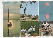 Der Neusiedlersee Austria Postcard 260a