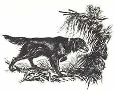 * Gordon Setter - 1964 Dog Art Print - Matted