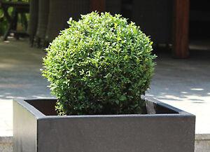 Terrazzo Blumenkübel, Würfel, schwarz, Pflanztopf, Pflanzkübel, Blumentopf