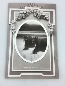 VINTAGE - POSTCARD - TAKING THE WATERS - ROTARY PHOTOGRAPHIC SERIES