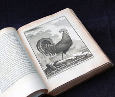 1771 BUFFON / DE SEVE VOL. 2: GAME BIRDS - QUARTO, FINE BINDING