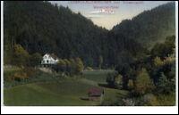 Lierbach-Allerheiligen Bad Schwarzwald um 1910/20 Wasserfall-Hotel Inh. J. Klein