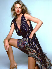 Lindsay Wagner Bionic Woman Dress 8x10 Picture Celebrity Print
