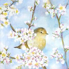 3 x Single SMALL Paper Napkins Decoupage Craft Birds Spring Blossom Blue S234