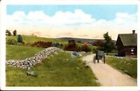Horse Buggy Carriage Rural Scene vintage postcard *Free Shipping*