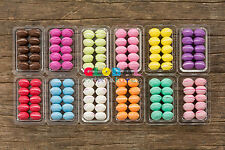 Dollhouse Miniatures Colourful Macaron & Plastic Tray Bakery Pastry Supply