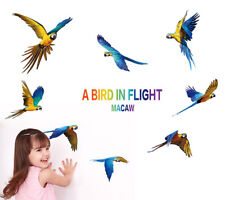 Birds Parrot Flight Room Home Decor Removable Wall Stickers Decals Decoration