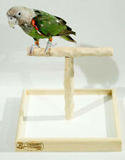 Deluxe Tabletop NU Perch - tabletop perch stand for all small to medium parrots