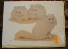 Lovely Chinchilla Persian Cat Blank Greeting Card